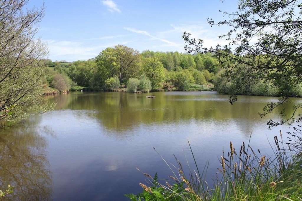 Bridesmere Lake in Clifford Barton private nature reserve